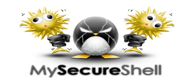 Install MySecureShell SFTP Server