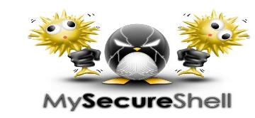 Install MySecureShell SFTP Server